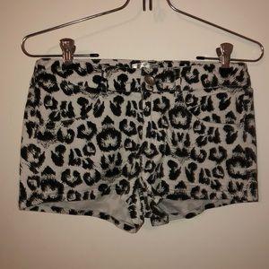 TCEC boutique shorts